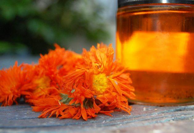 В лечение варикоза народными средствами входит применение отвара календулы